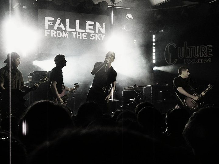 Fallen From The Sky