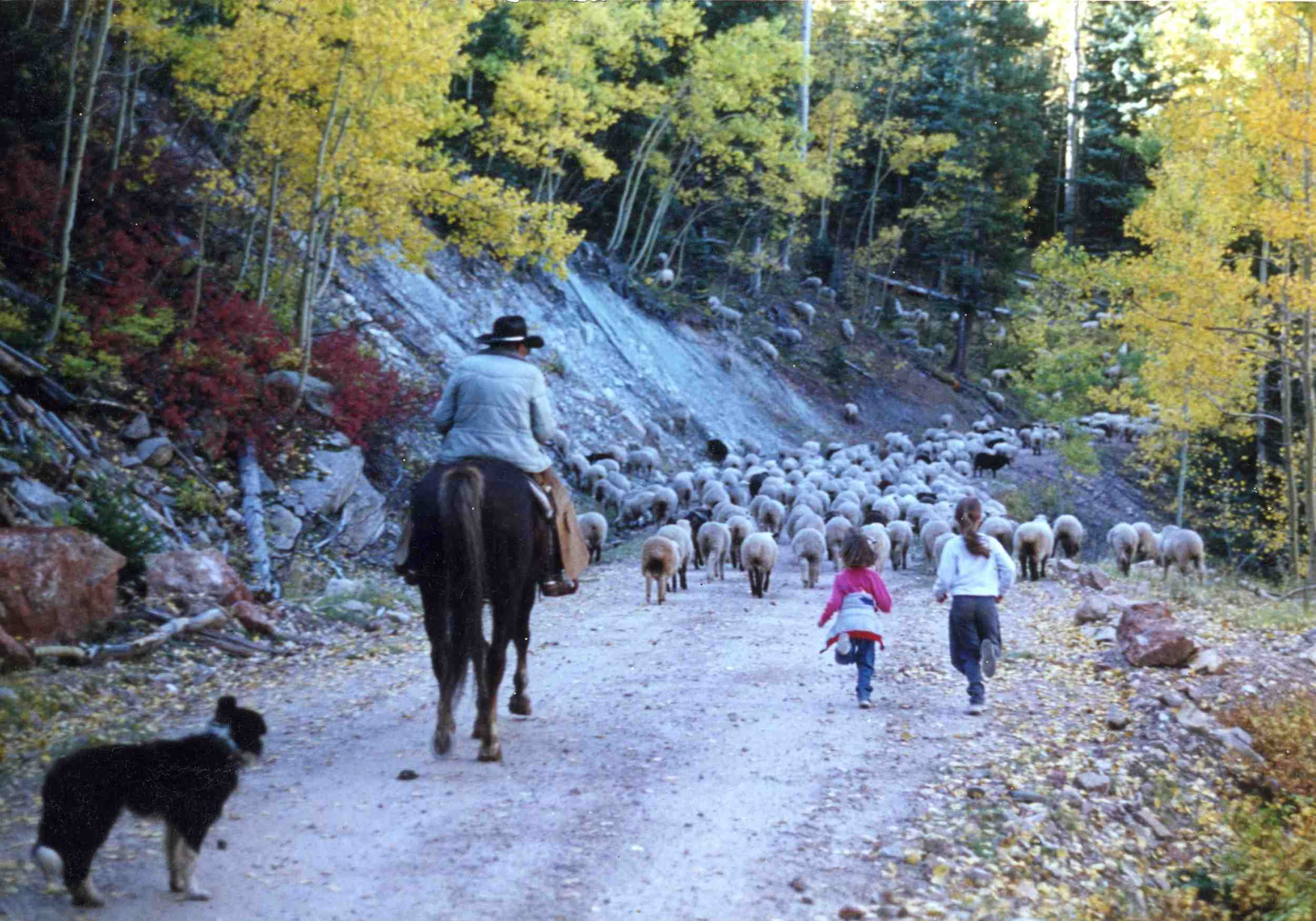 My sister and I run behind the family sheep under the watchful eye of the shepherd, Martín Romero.