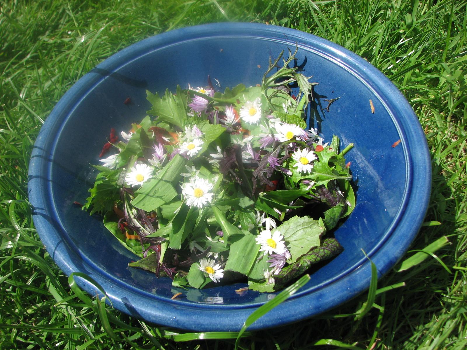 Nikki salad.JPG
