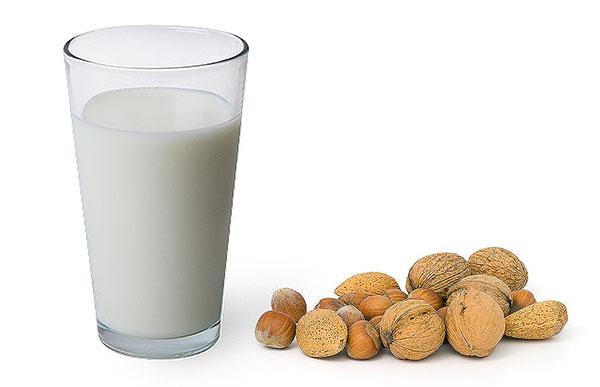 nutmilks, taught on UK detox retreats