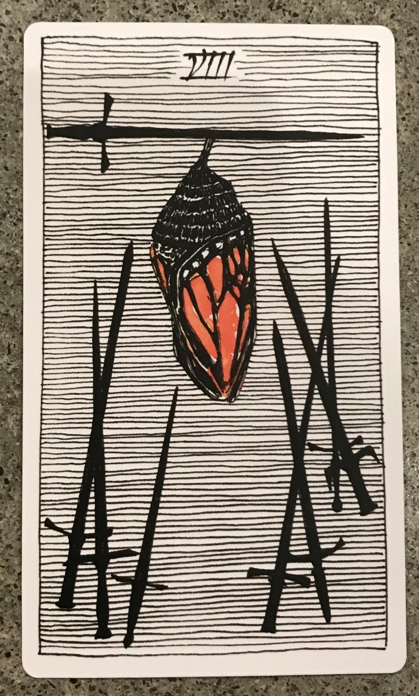 eight of swords from the wild unknown tarot deck, by kim krans