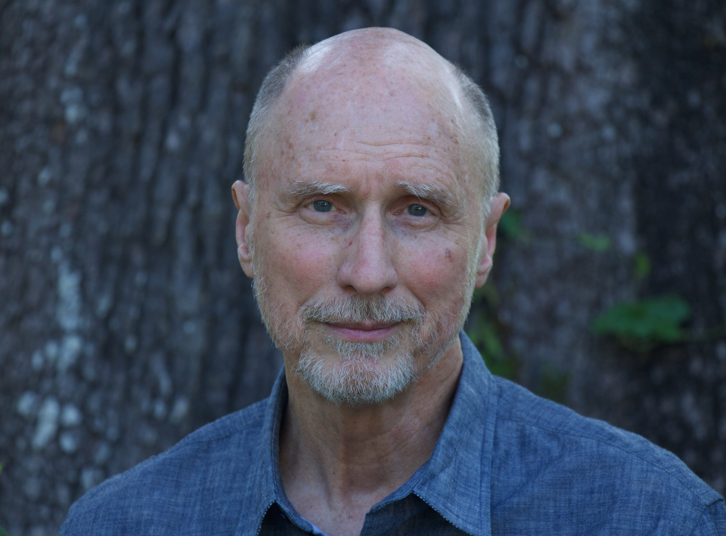 Robert Olen Butler, Author