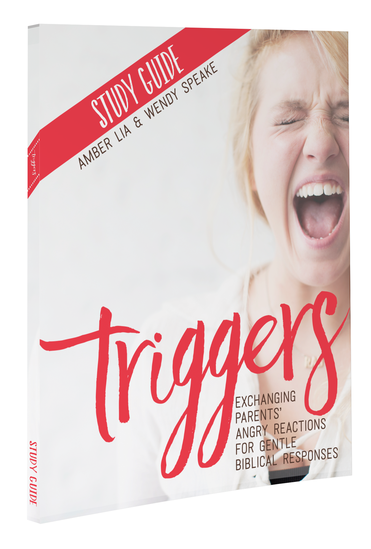 Triggers-StudyGuide-Mockup1.png