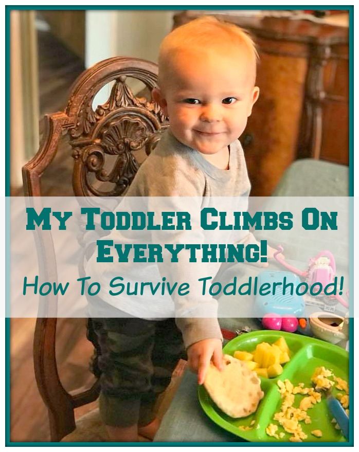My Toddler Climbs On Everything! How To Survive Toddlerhood!.jpg