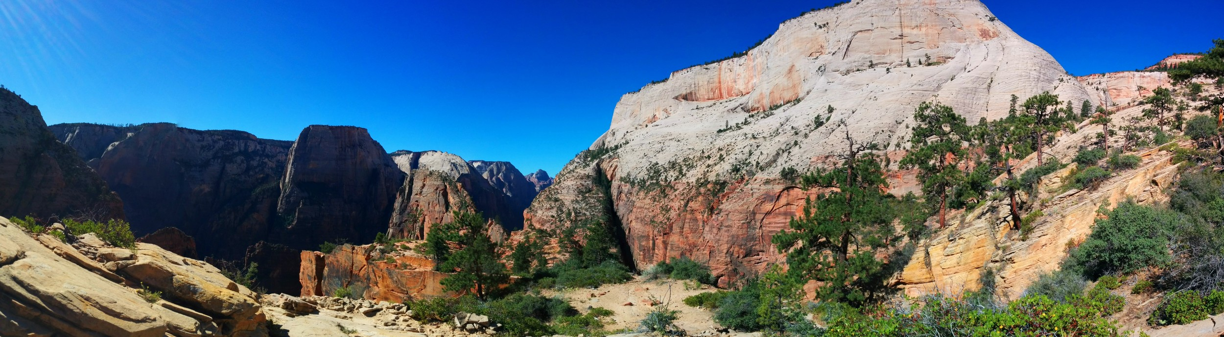 Image from Dave's 2015 Zion trip