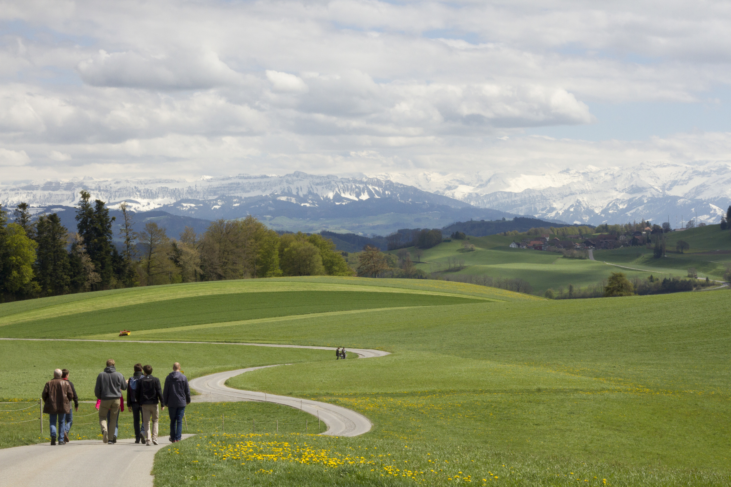 Aaron had a meeting in Bern, Switzerland in April. The group took a few hours from their meeting time and wandered through the green hills.