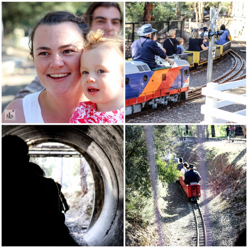 Mamma Knows East - Diamond Valley Railway