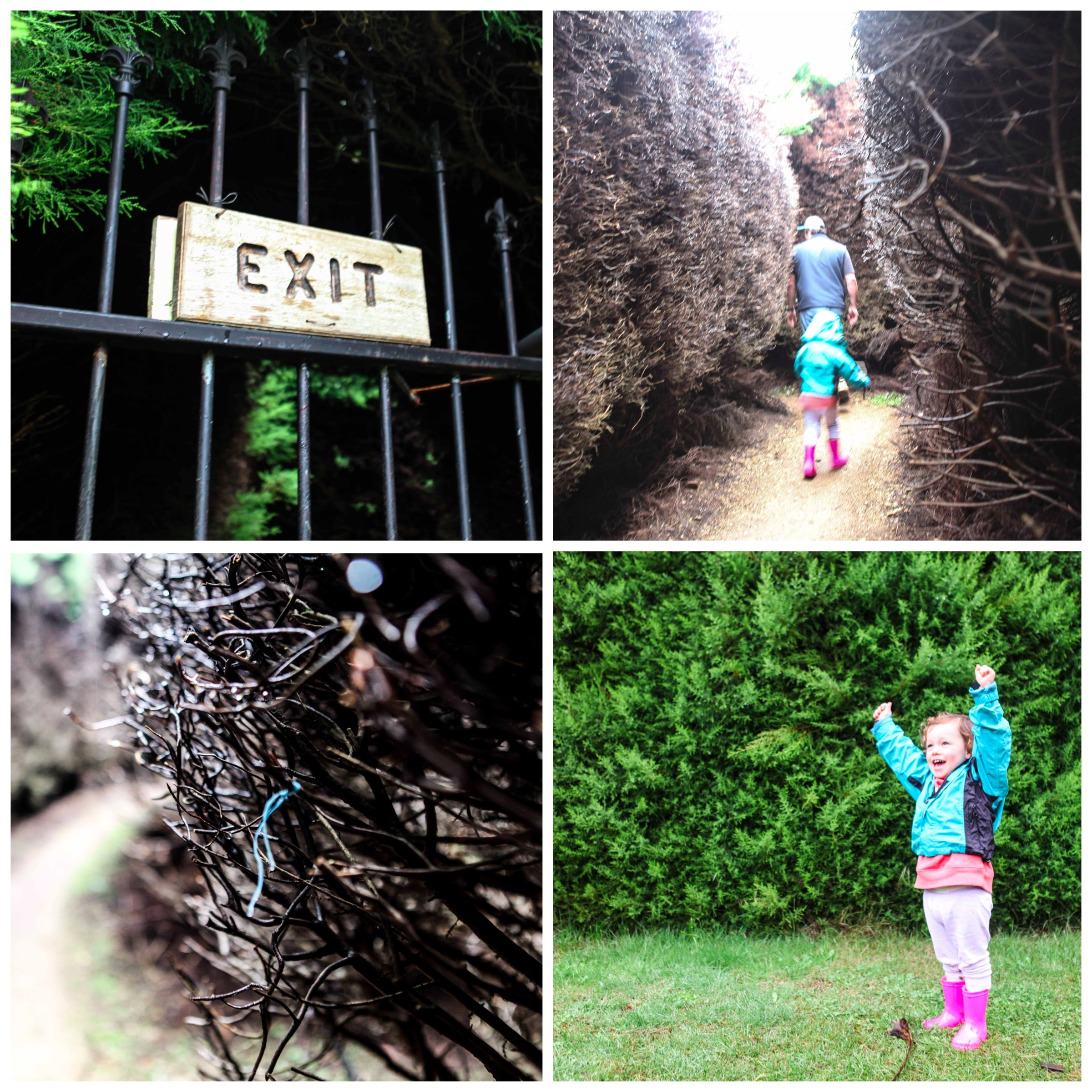Mamma Knows East - Wandi Maze
