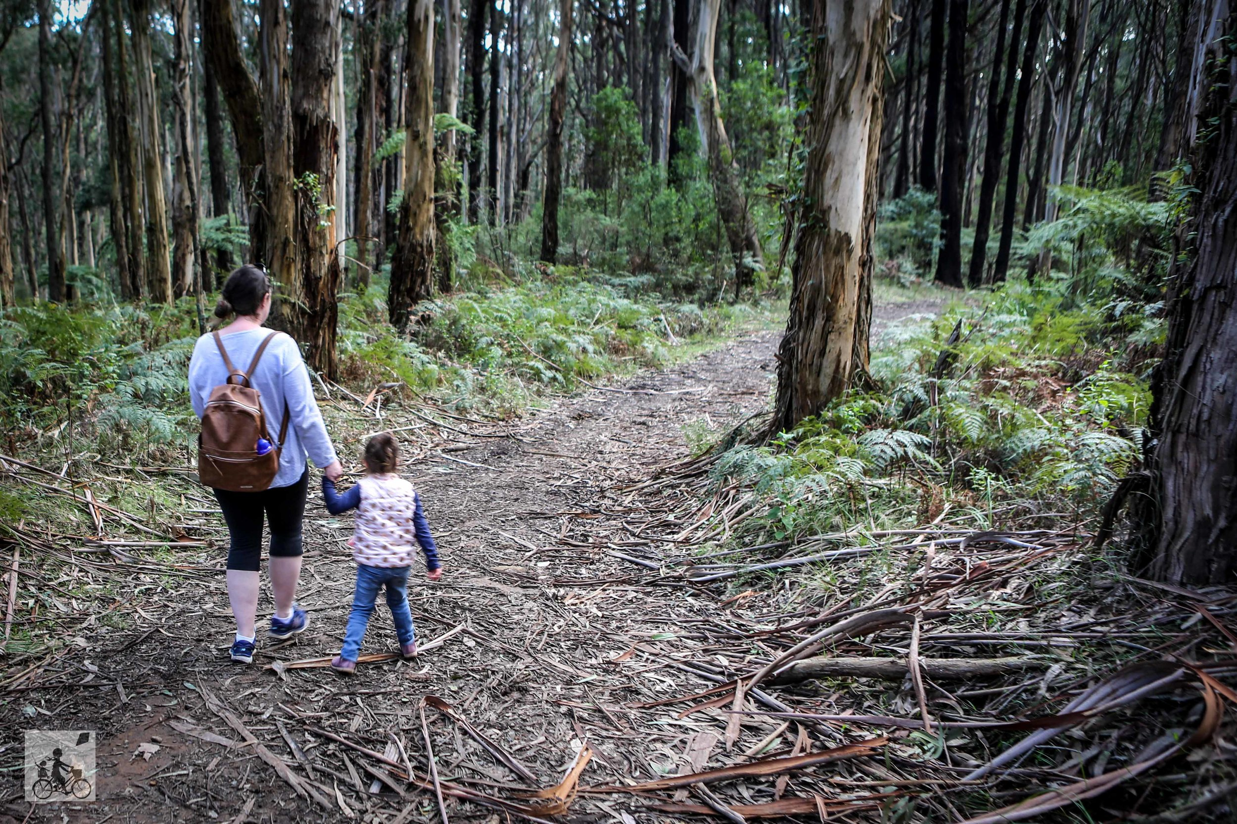 Doongalla Forest - Mamma Knows East (48 of 64).jpg