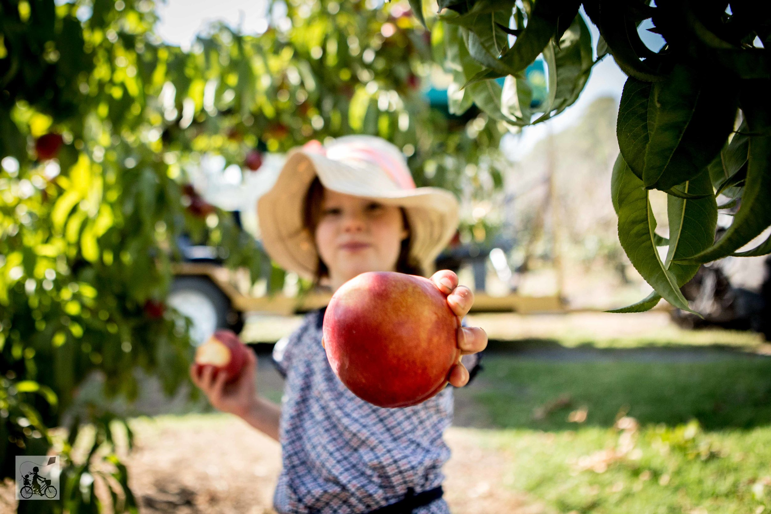 Rayners Orchard - Mamma Knows East (24 of 44).jpg