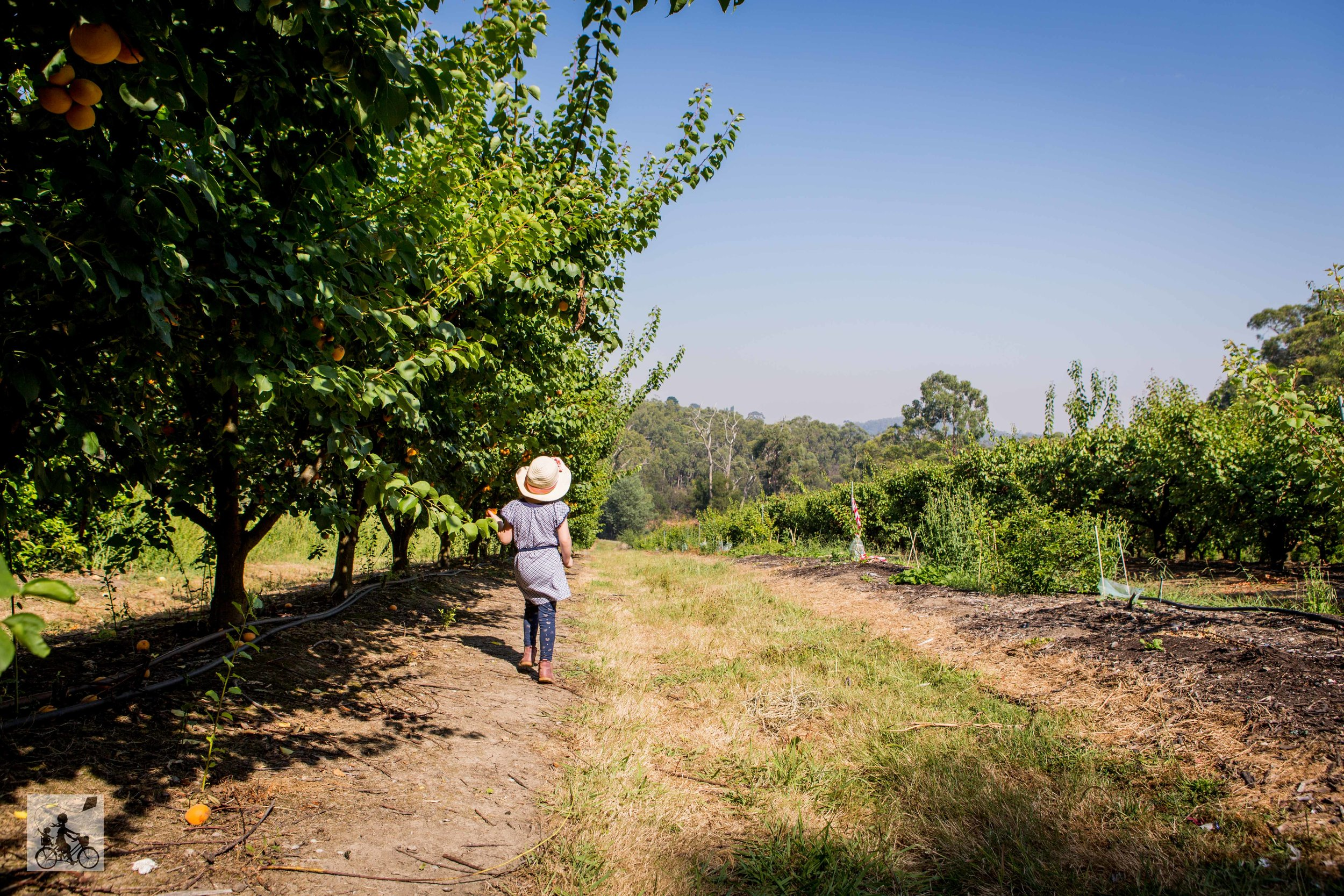 Rayners Orchard - Mamma Knows East (31 of 44).jpg