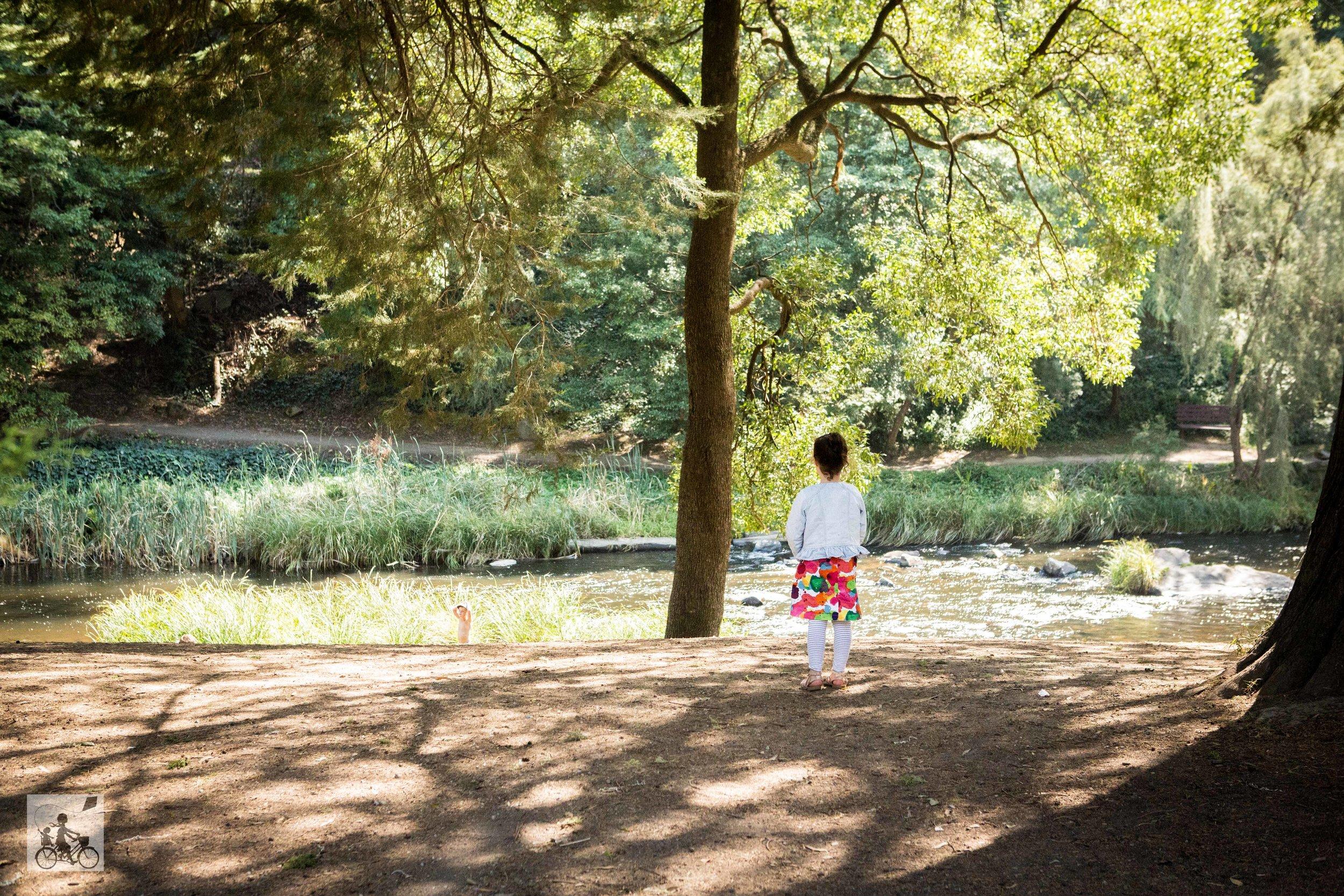 Yarra River Walk, Warburton - Mamma Knows East  (10 of 41).jpg