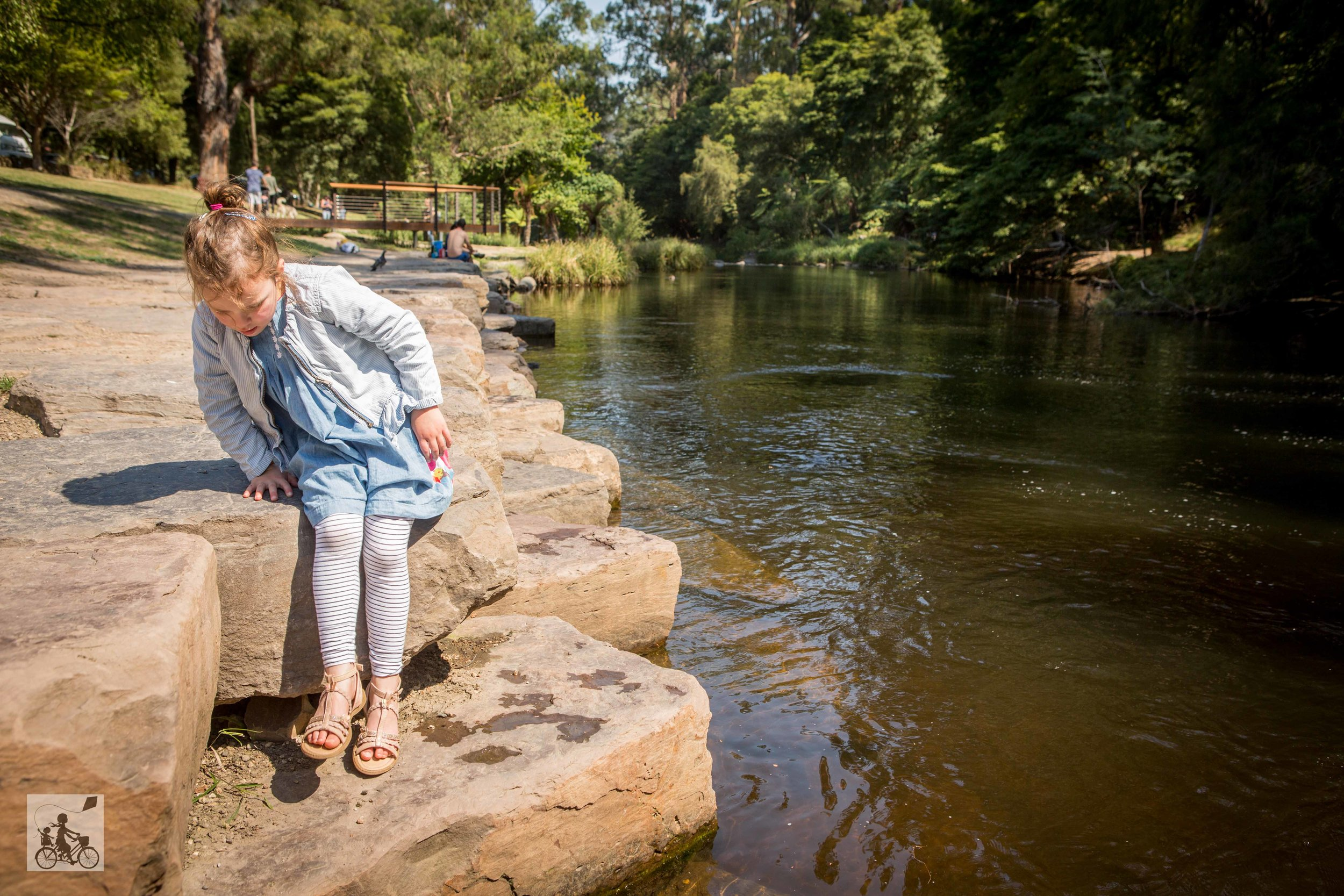 Yarra River Walk, Warburton - Mamma Knows East  (29 of 41).jpg