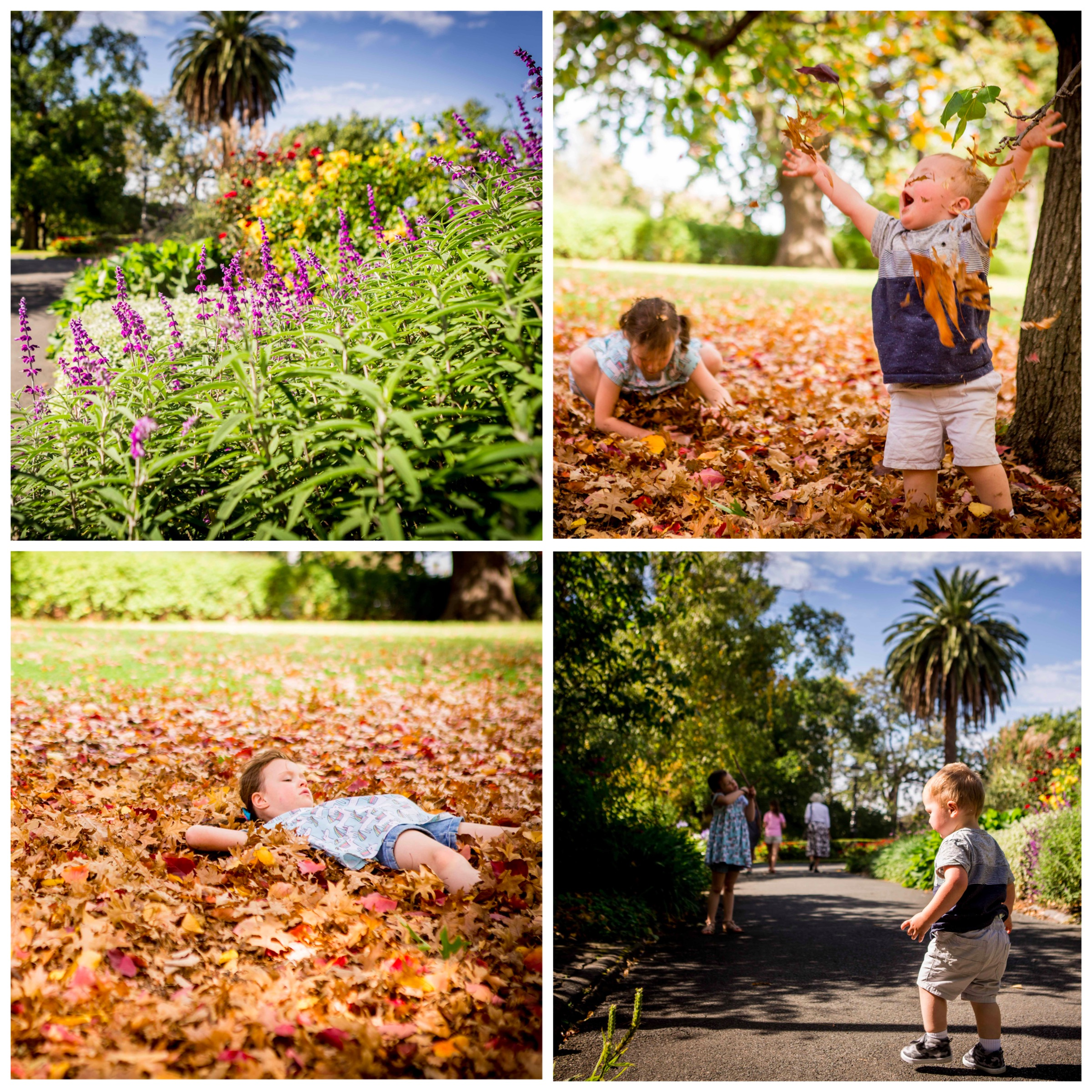 01 Canterbury Gardens - Mamma Knows East (1 of 30).jpg