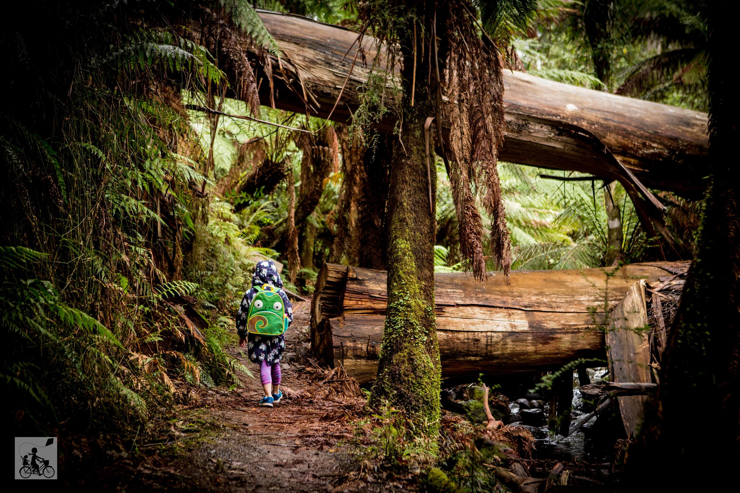 Badger Weir Trails - Mamma Knows East (7 of 29).jpg