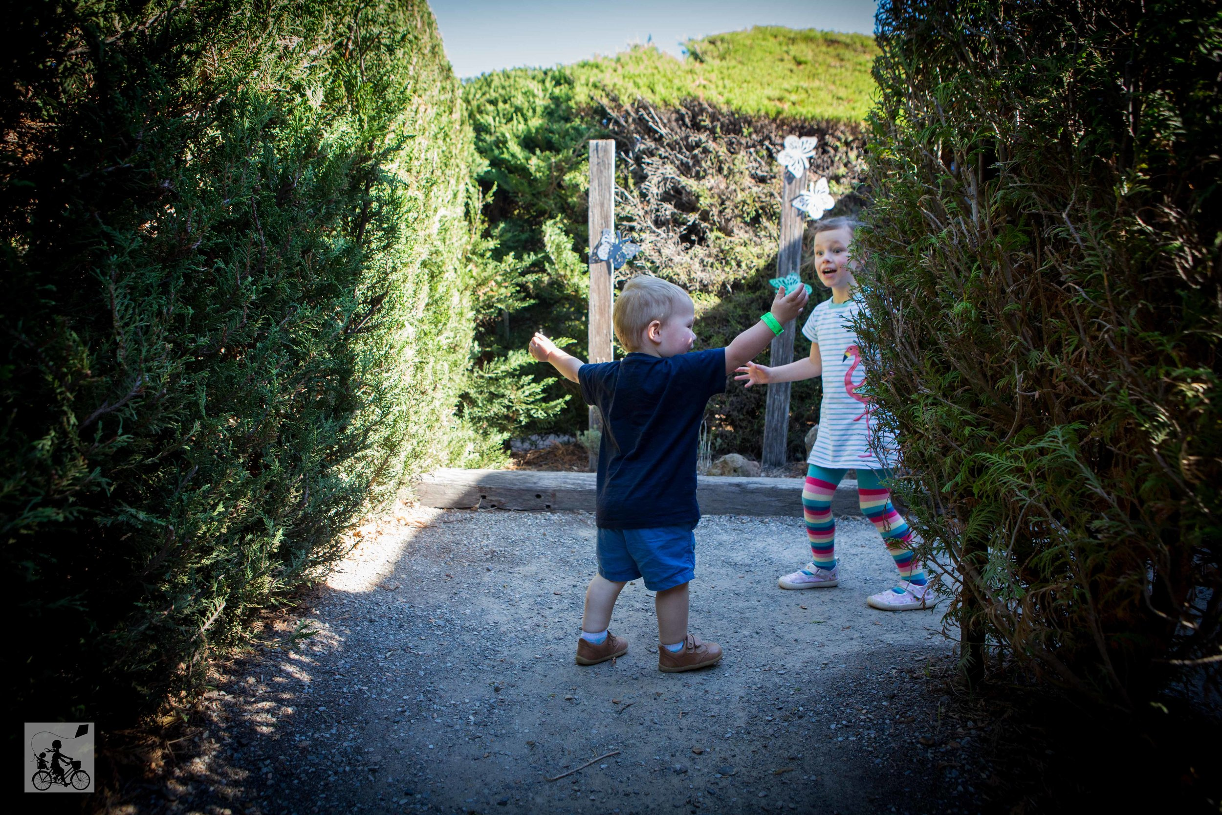 Hedgend Maze 2019 - Mamma Knows East (10 of 25).jpg