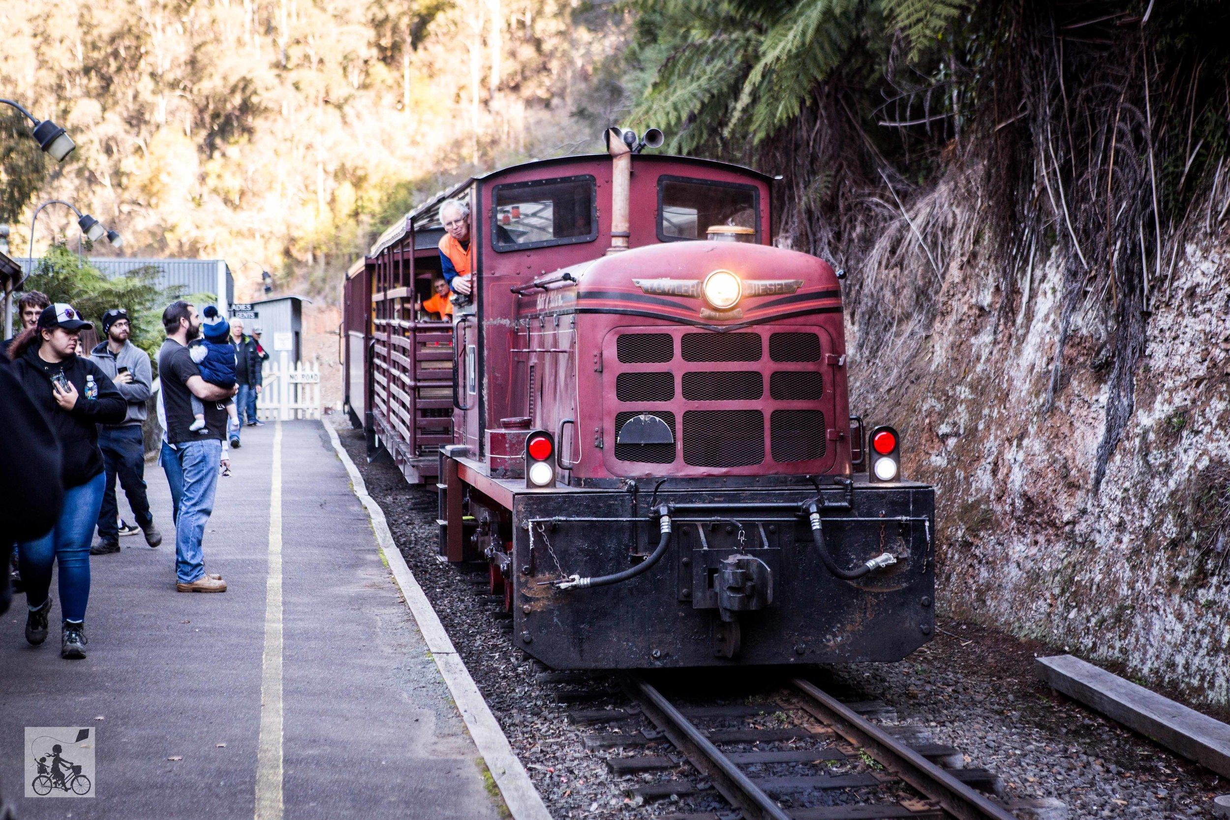 Walhalla Goldfields Railway - Mamma Knows East (29 of 48).jpg