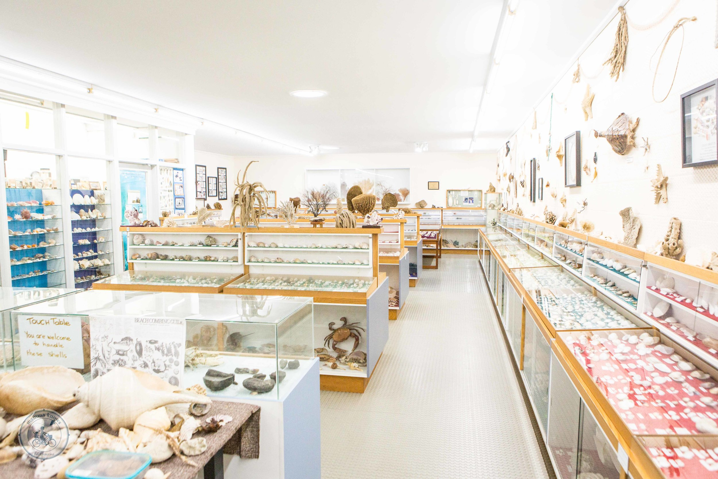 South Gippsland Conservation Society Shell Museum (1 of 26).jpg