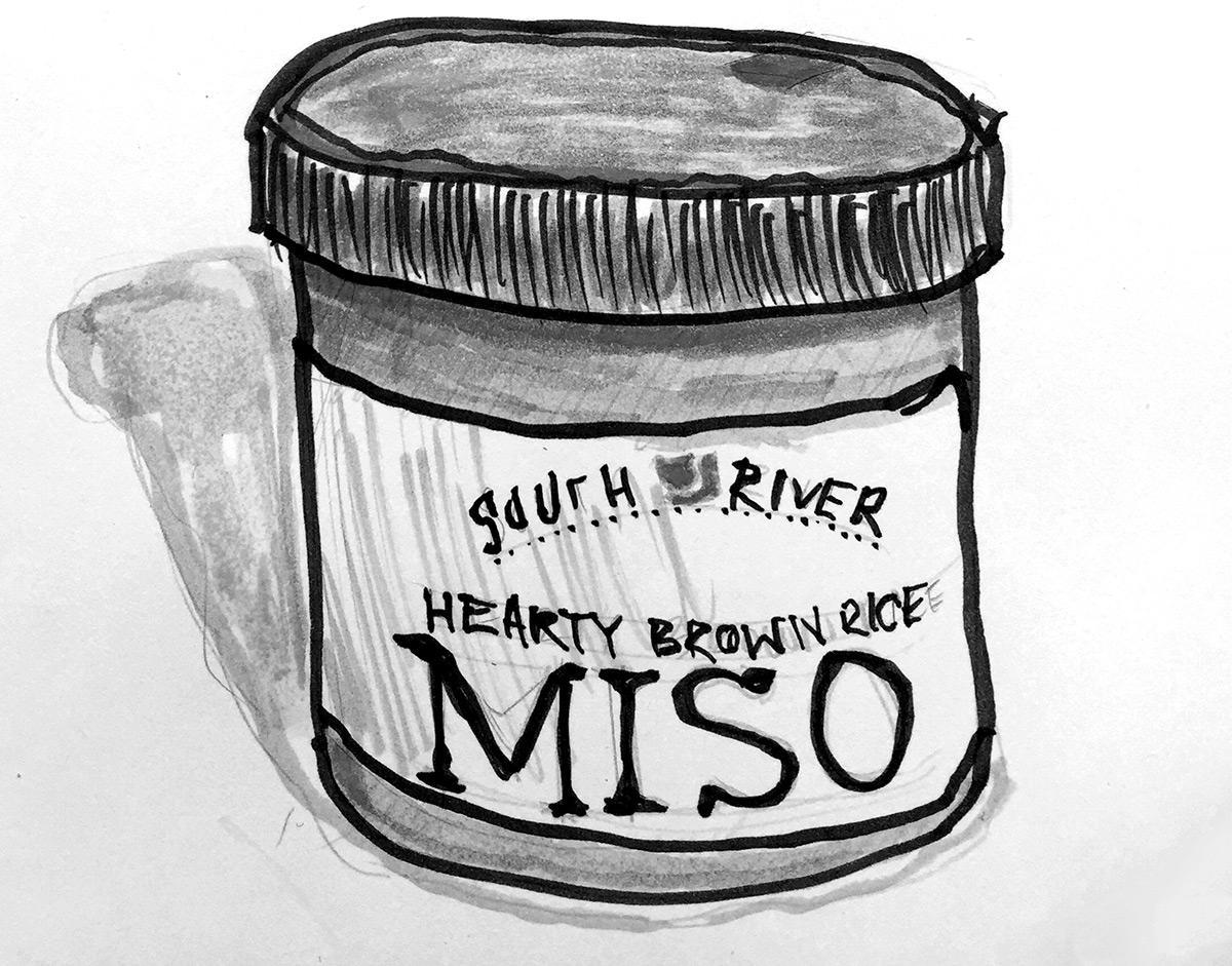 miso companion