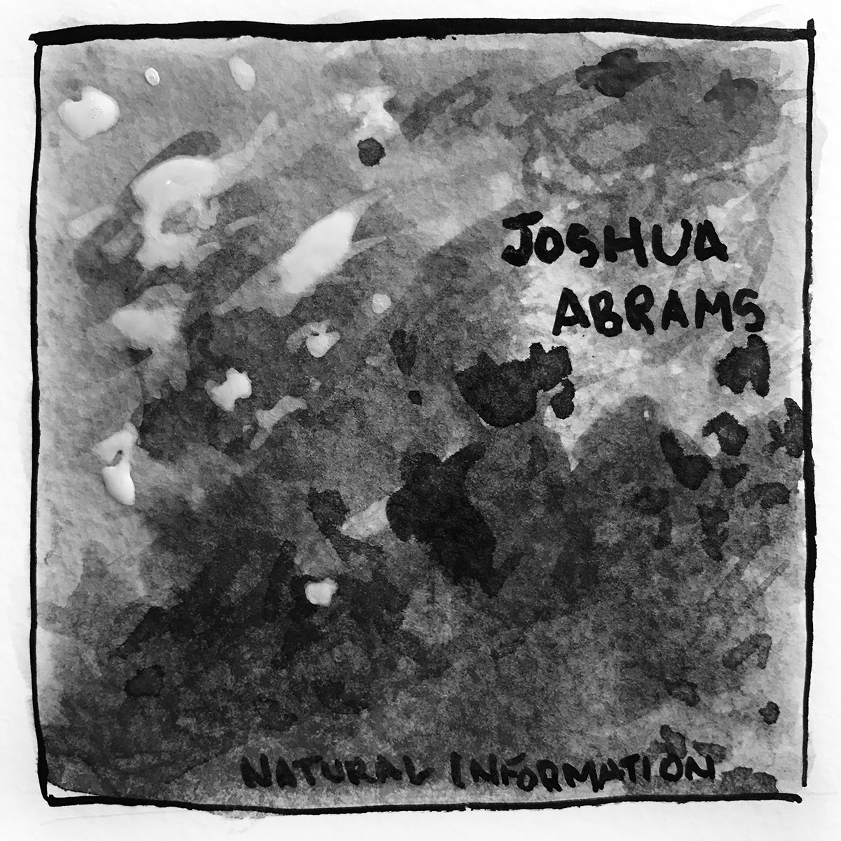 Joshua Abrams Natural Information