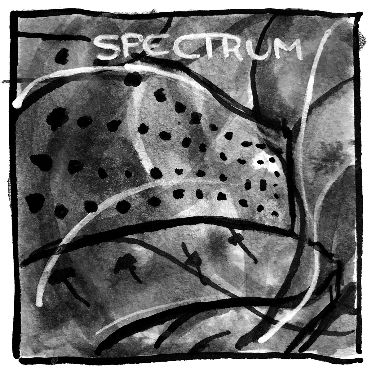 Spectrum Highs Lows Heavenly Blows