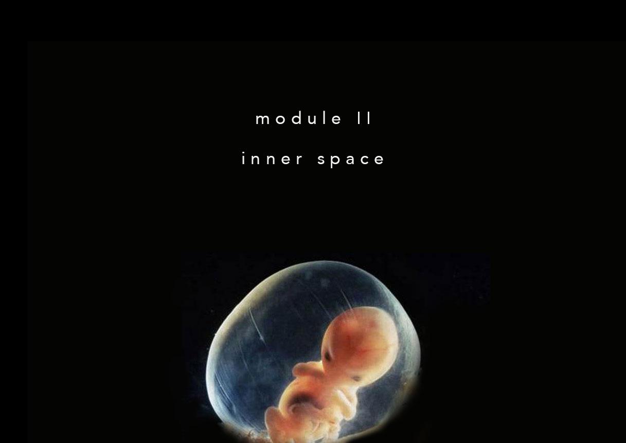 module-2.jpg