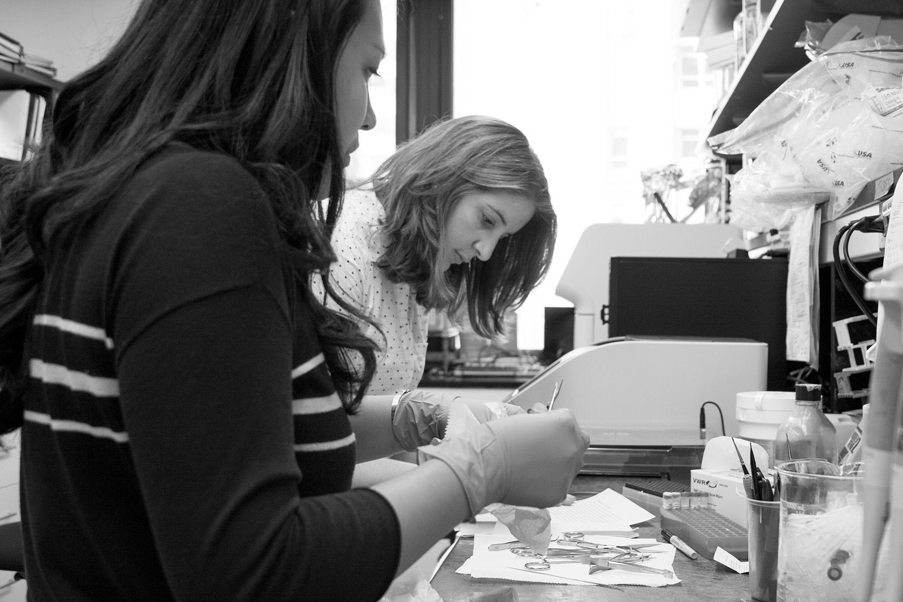 Vanessa and Meghin cleaning tools after tissue harvesting.