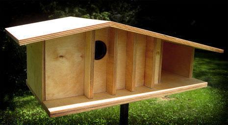 curbly-uploads-production-photos-0000-0005-8697-birdhousefrontvig1