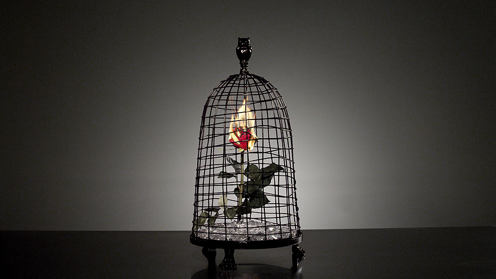 """The burning rose was also a symbol for enticing the """"other side"""". The spontaneous combustion represented the spontaneous rebellion we are all entitled to every now and again."""
