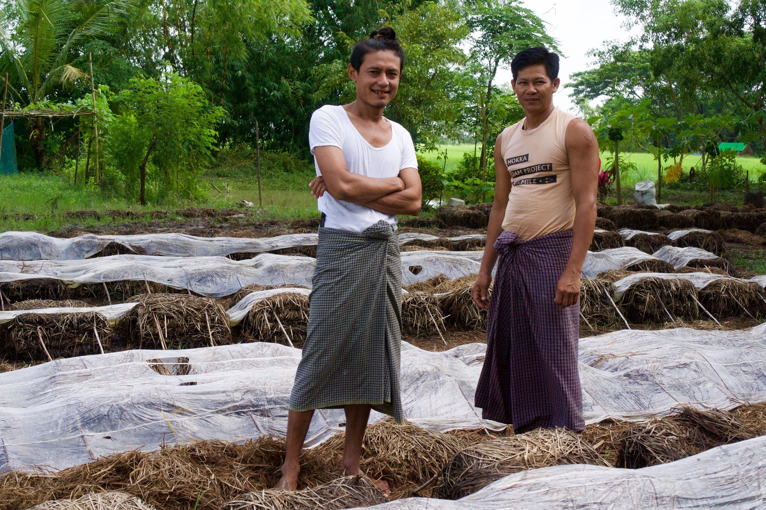 Ko Zin Min Htun (Paddy farmer) -