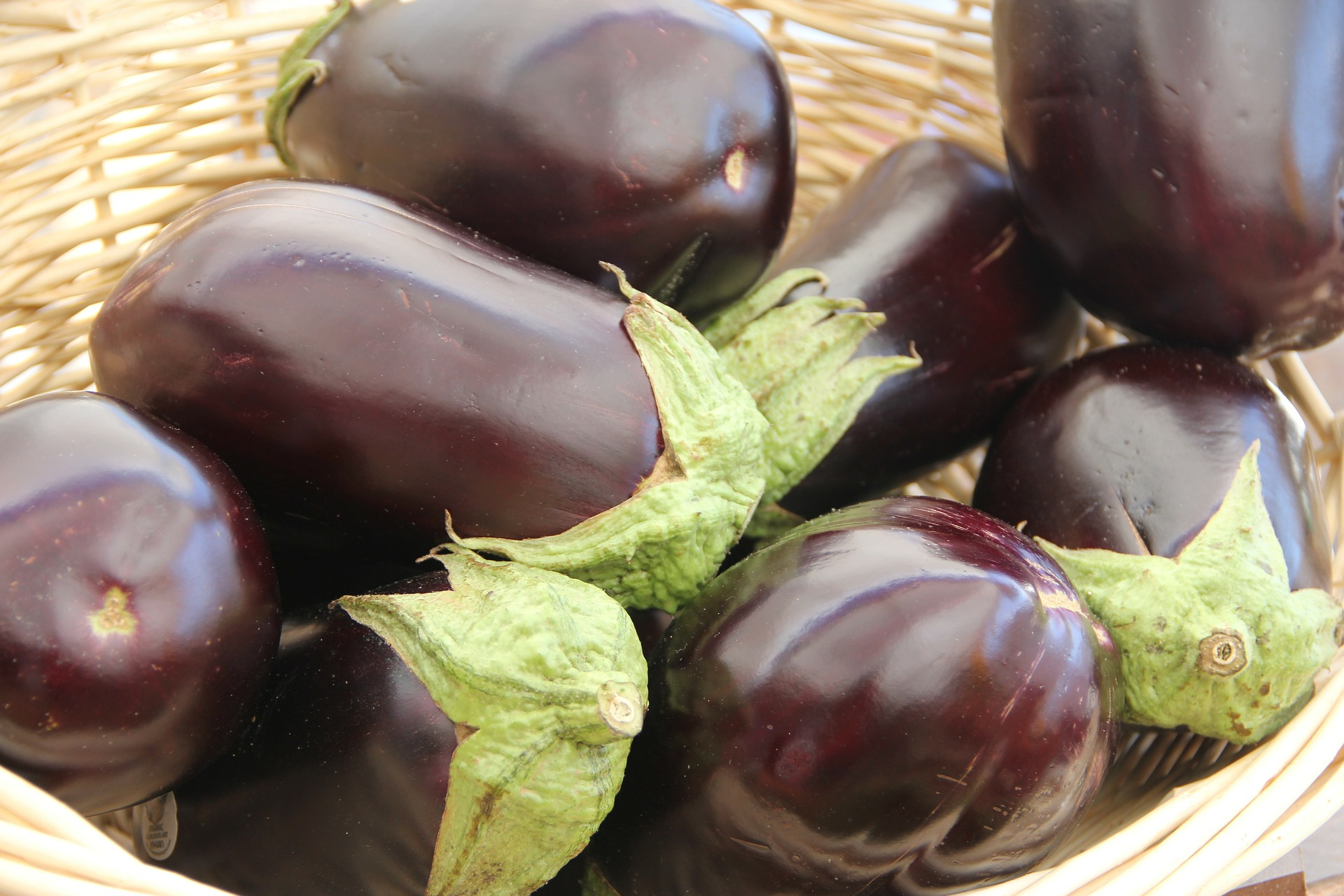 Eggplant, Purple Italian