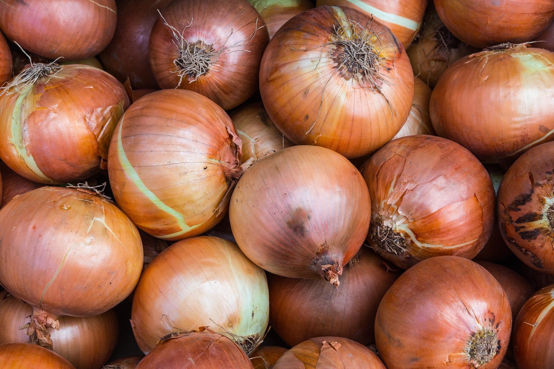 Onion, Copra
