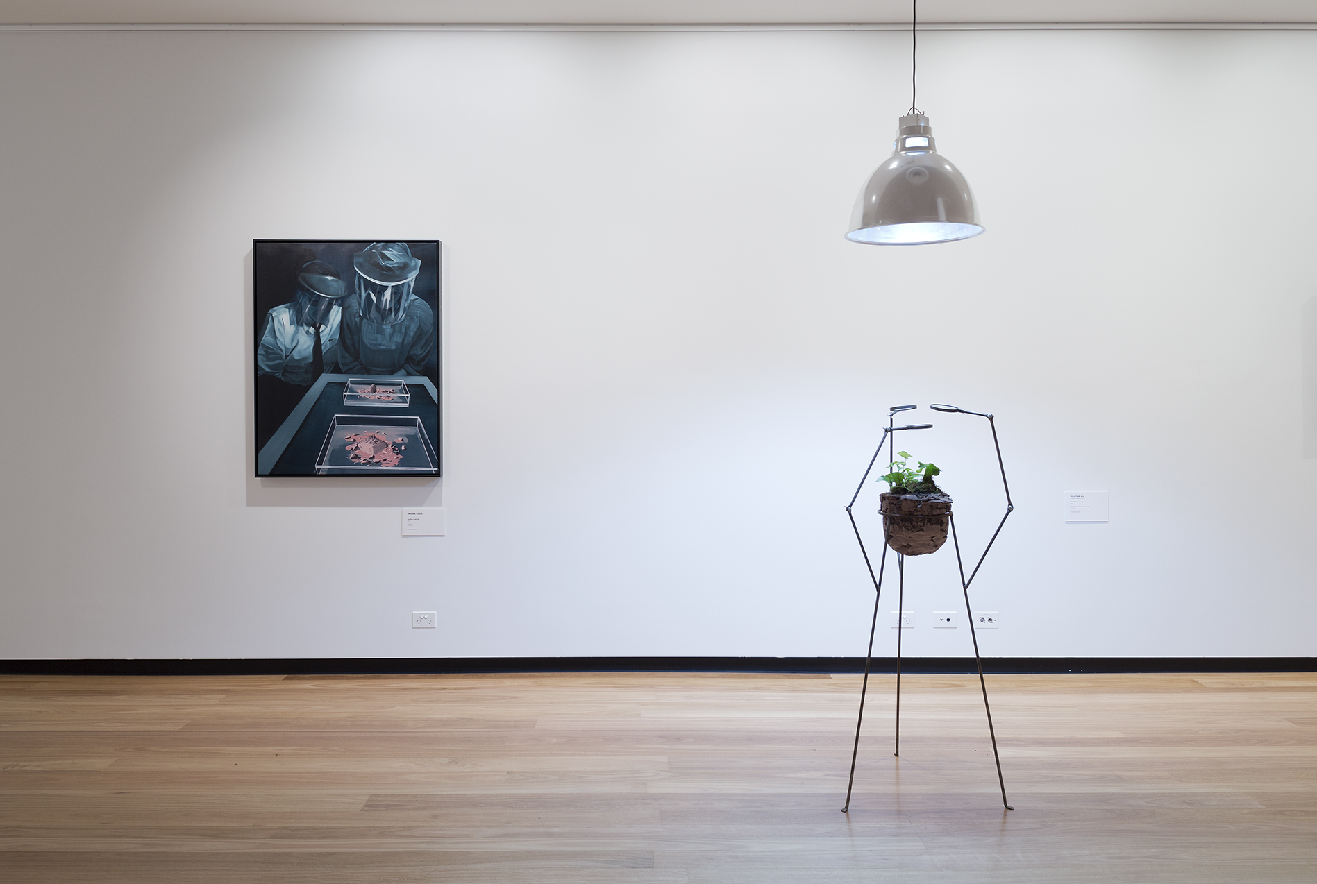 imagined worlds , Installation view; image courtesy Town Hall Gallery, melbourne