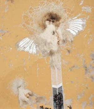 24 em file: Vanessa Barbay: Painting our animal selves: MELINDA HINKSON   Vanessa Barbay,  Crucified (Winter Chough and Starling) , 2011-12, chough, starling, oil, delek and rabbit skin glue on canvas, 73 x 84.5cm