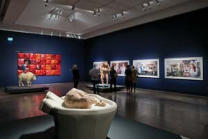 3 (Re)fresh: AGSA under Nick MitzevicH: MARGOT OSBORNE   Patricia Piccinini,  Once upon a time …  , installation view (detail), Art Gallery of SA, 2011. Photograph by Saul Steed