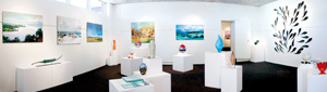 15 A silver lining: Framed – The Darwin Gallery: MARTINA COPLEY   Interior panorama view of Framed – the Darwin Gallery