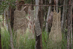 9 Weaving of country lost in translation: the problem of exhibiting environmental art: TAMSIN KERR   Jan Dunlop, wardrobe for and of the rainforest