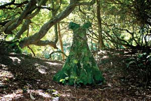 1 If I say I love my place, what's with the bags I've packed? The cultural changes required by landscape memoir and eco-regionalism: TAMSIN KERR   Wendy McGrath,  Forest Couture , 2005, site-specific installation/sculpture, hand stitched 'debut' gown made from the leaves of the macaranga tanarius (a rainforest pioneer), red cotton and tulle. Location: Noosa Woods remnant rainforest, at the end of Hastings Street, for the  Floating Land Art & Environment Project  2005. Collection of the artist. Photograph by Wendy McGrath