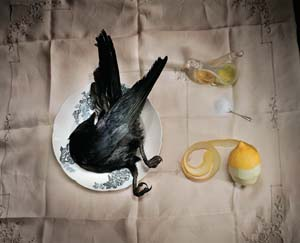 8 The QCP: ongoing analysis and a constant receptivity, an interview with Maurice Ortega: ADAM GECZY   Marian Drew,  Crow with salt,  2003, Giclee print. Courtesy the artist