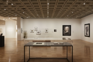 14 Careful gestures: Curatorial work and the poetic potential of metaphor: Isobel Parker Philip,  Sydney     Imprint: photography and the impressionable image,  exhibition view, Art Gallery of New South Wales (AGNSW), Sydney, 2016; photo: Felicity Jenkins/AGNSW