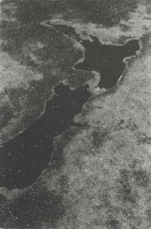 15 Reproducing history:  New Zealand Photography Collected : Geoffrey Batchen,  Wellington    Peter Peryer, N ew Zealand 15.3.1991 , 1991, silver gelatin print, 40.8 x 26.8cm; Museum of New Zealand Te Papa Tongarewa, Wellington, purchased 2004