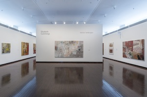 2 Out of The Enclosure: Elisabeth Cummings's 'Interior Landscapes': Anne-Marie Jean,  Canberra    Elisabeth Cummings:  Interior Landscapes , exhibition install view, ANU Drill Hall Gallery, Canberra, 2017; image courtesy the Drill Hall Gallery, Canberra; photo: Rob Little Digital Images