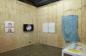 8 Studio Tropes: Exploring the Fluid contexts for Creativity: craig Judd, Sydney    Our Studio Selves , exhibition install view, 'Ideas Platform', Artspace, Sydney, April 2017; photo: Zan Wimberley