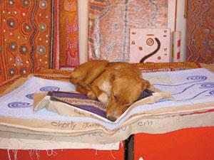 7 Life, dogs and art in Yuendumu: GLORIA MORALES   Warlukurlangu Artists. Photo Gloria Morales.