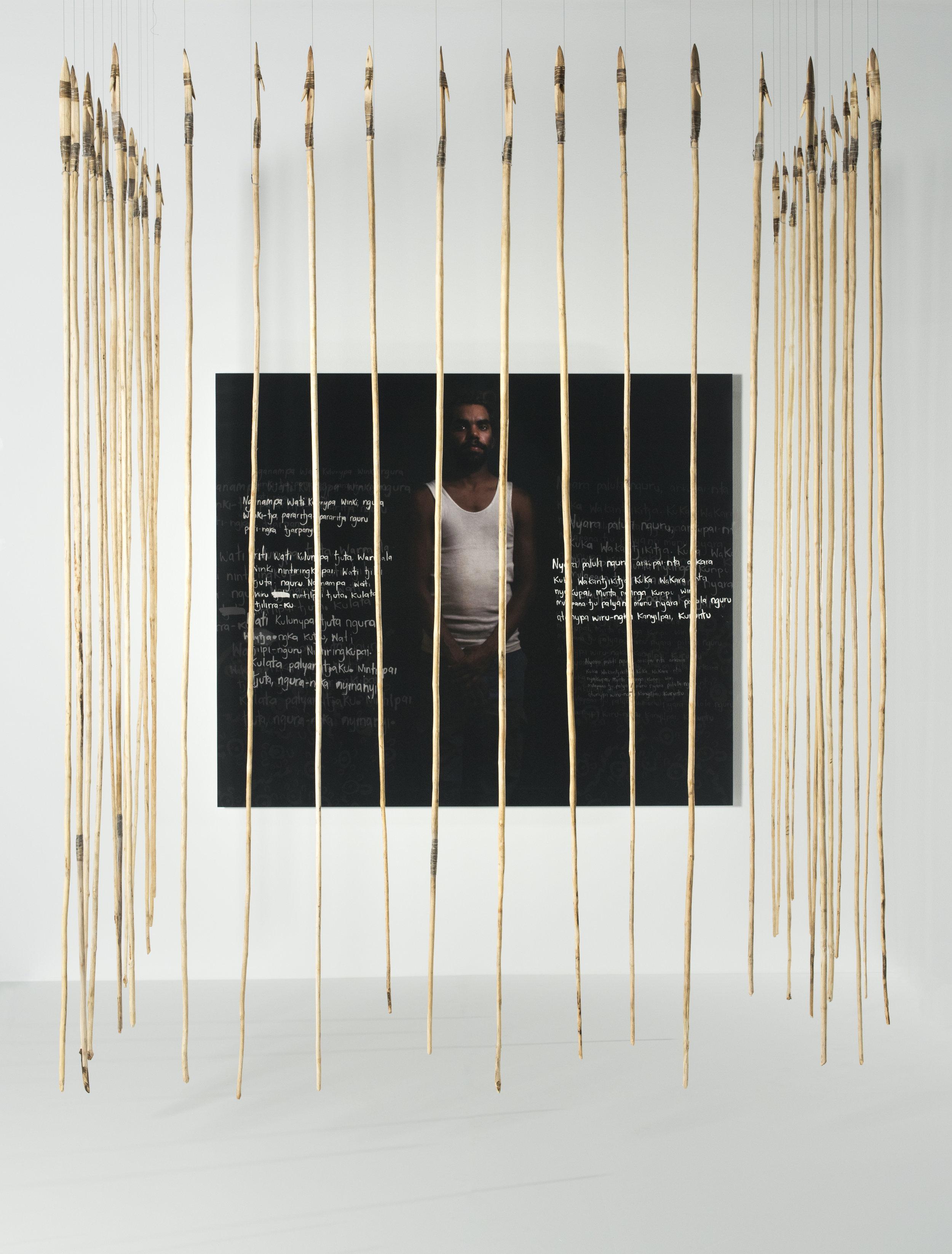 Anwar Young, Unrupa Rhonda Dick and Frank Young,  Kulata Tjuta – Wati kulunypa tjukurpa (Many spears – Young fella story) , 2017, digital print, wood, kangaroo tendon,  kiti  (natural glue); print 148 x 176cm; spears 280 x 2 x 2cm approx. (37 pieces); image courtesy the artists and the Museum and Art Gallery of the Northern Territory, Darwin