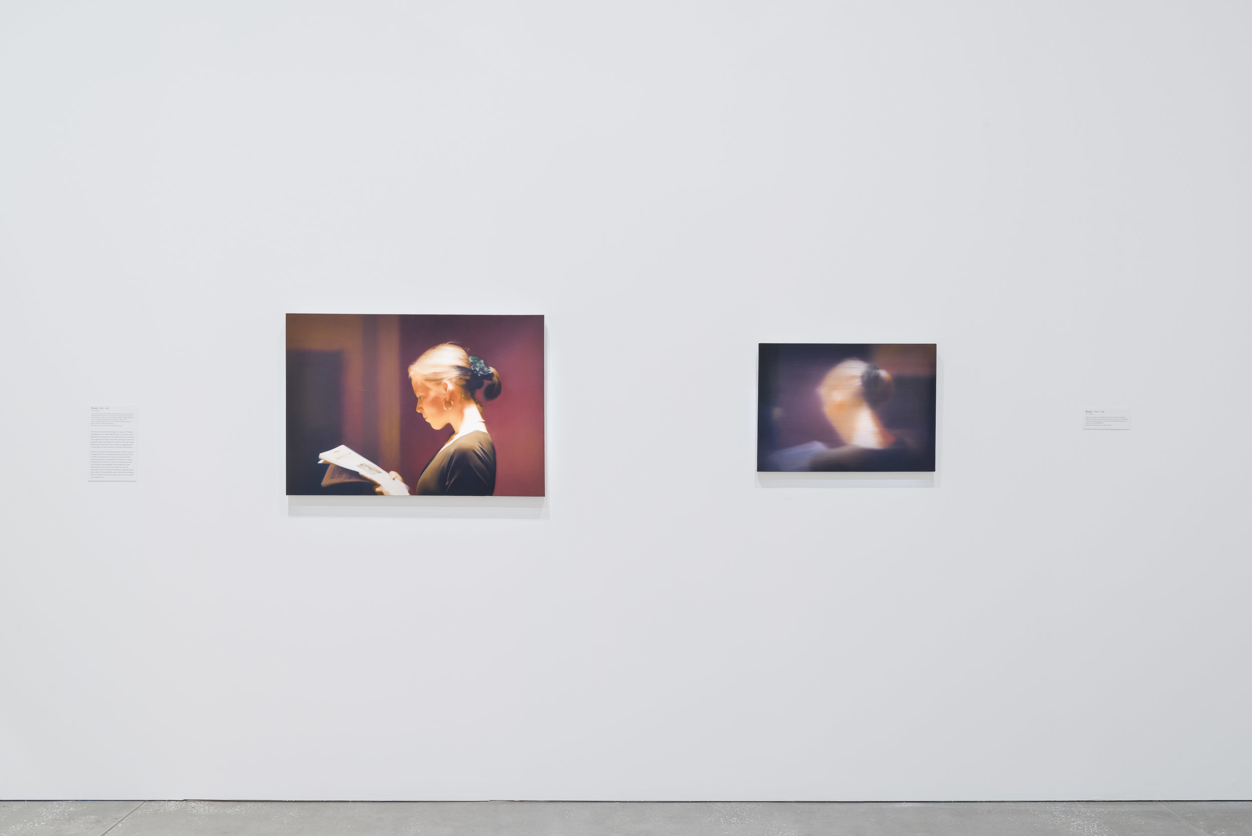 Gerhard Richter: The Life of Images , exhibition installation view, Queensland Art Gallery / Gallery of Modern Art (QAGOMA), Brisbane, 2017, with  Reader (804)  and  Reader (799-1) , both 1994; photo: Natasha Harth, QAGOMA