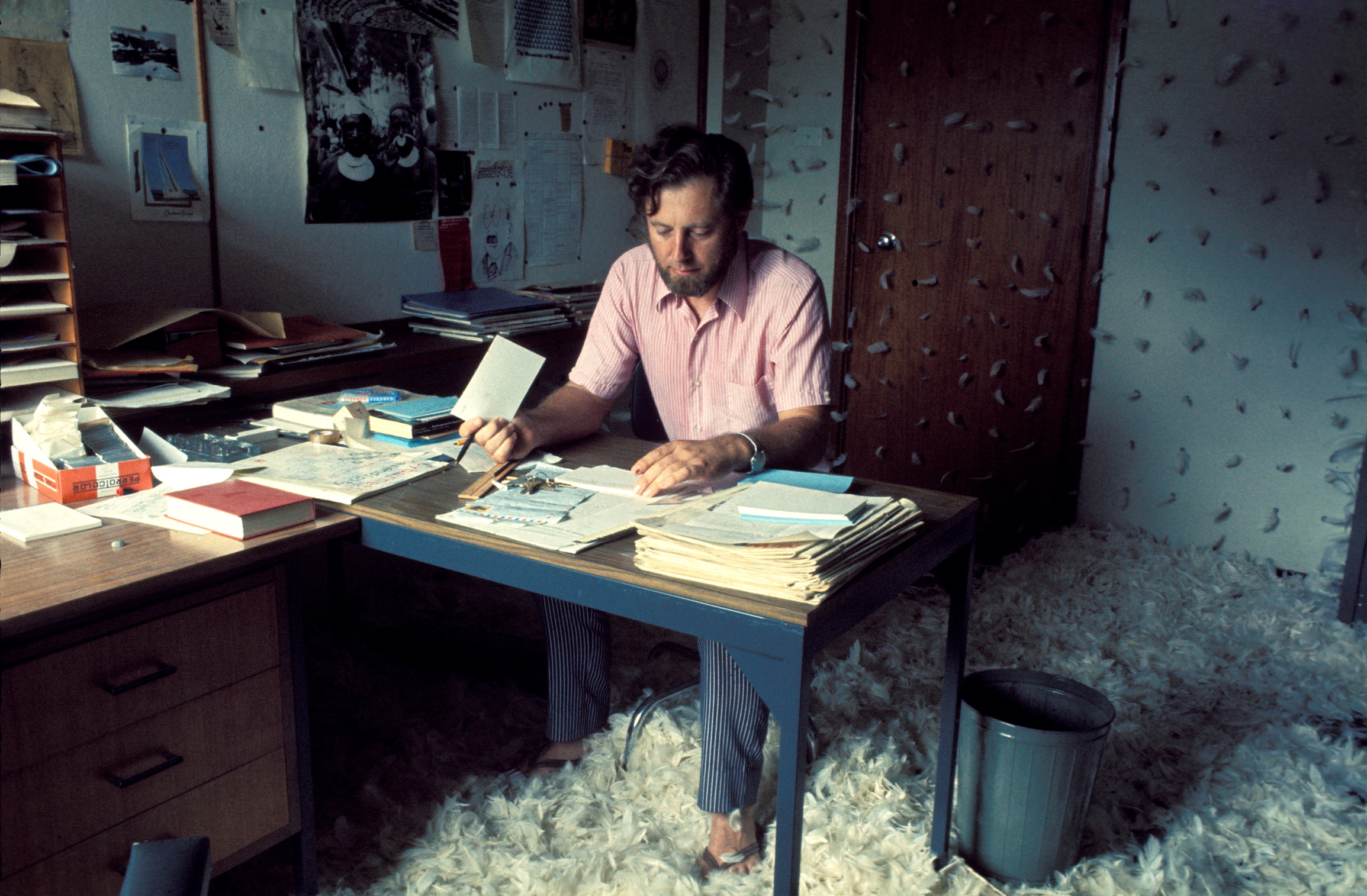 11 Donald Brook and post-object art:   Stephen Jones   Herbert Flugelman,  Donald Brook in Feathered Office , March 1971, colour transparency, 2.4 x 3.6cm; Art Gallery of New South Wales Archive, Sydney; © Herbert Flugelman, licensed by Copyright Agency, Australia