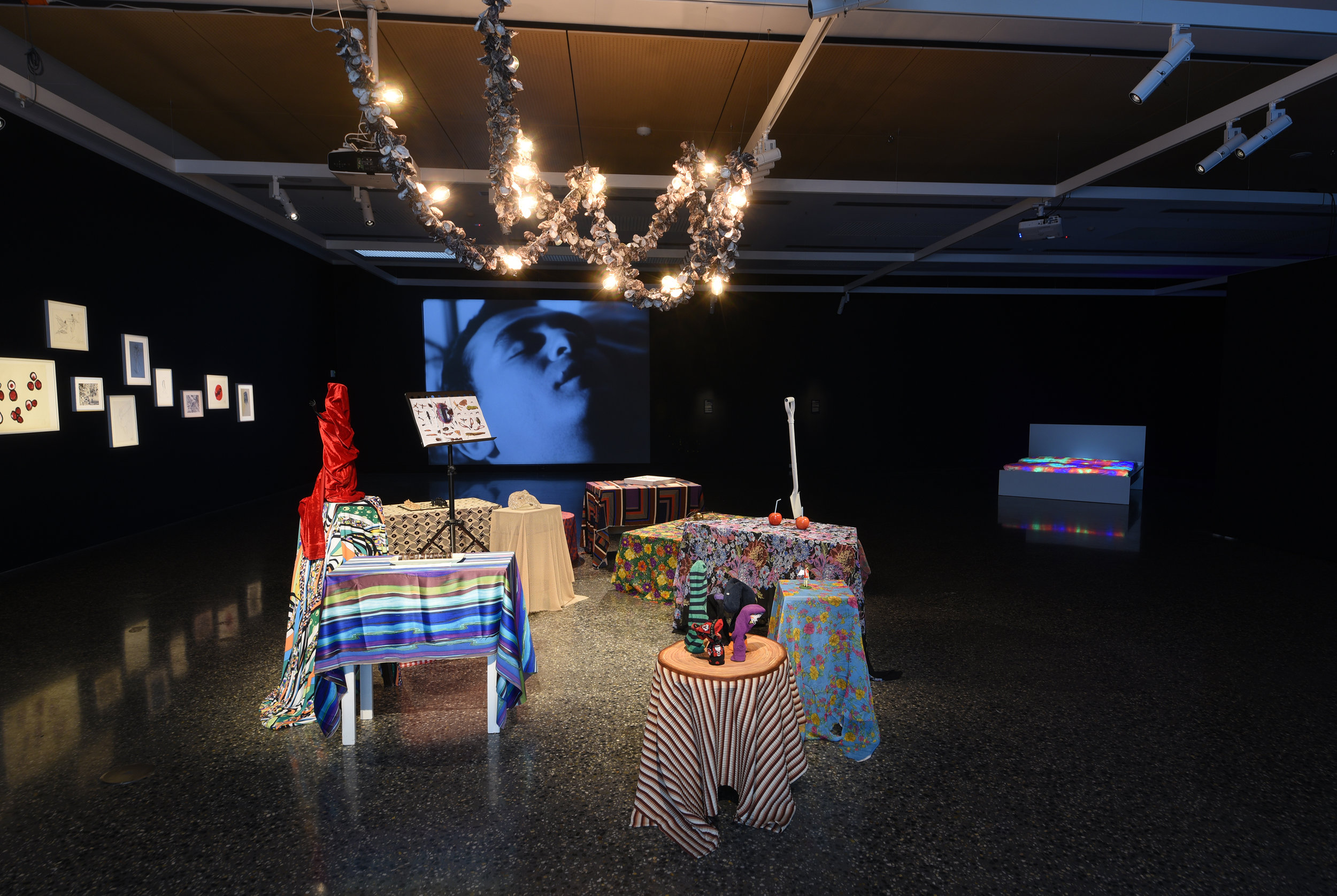 Zzzzz: Sleep, Somnambulism, Madness , exhibition installation view, Murray Art Museum Albury (MAMA), 2019; image courtesy MAMA, Albury; photo: Jules Boag