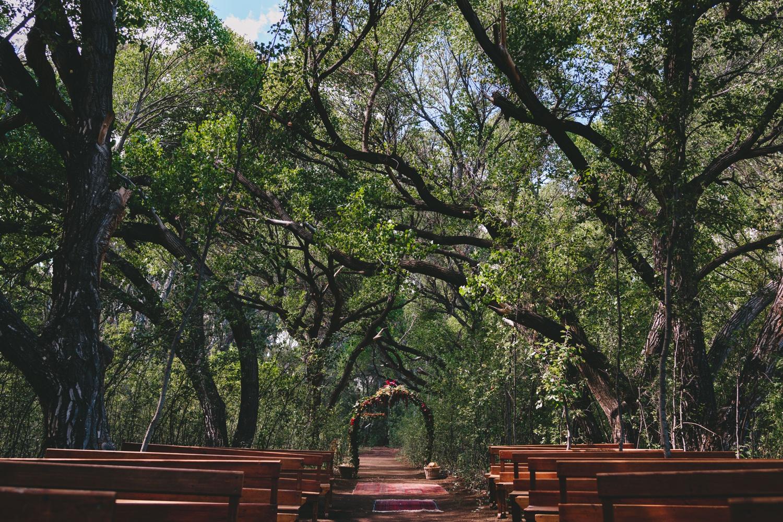 Jolynn_Dylan_weddingcharlie_ray_photography_nieu_bethesda_south_africa_karoo_filmmakers_forest_outdoor_reception_street_0210.jpg