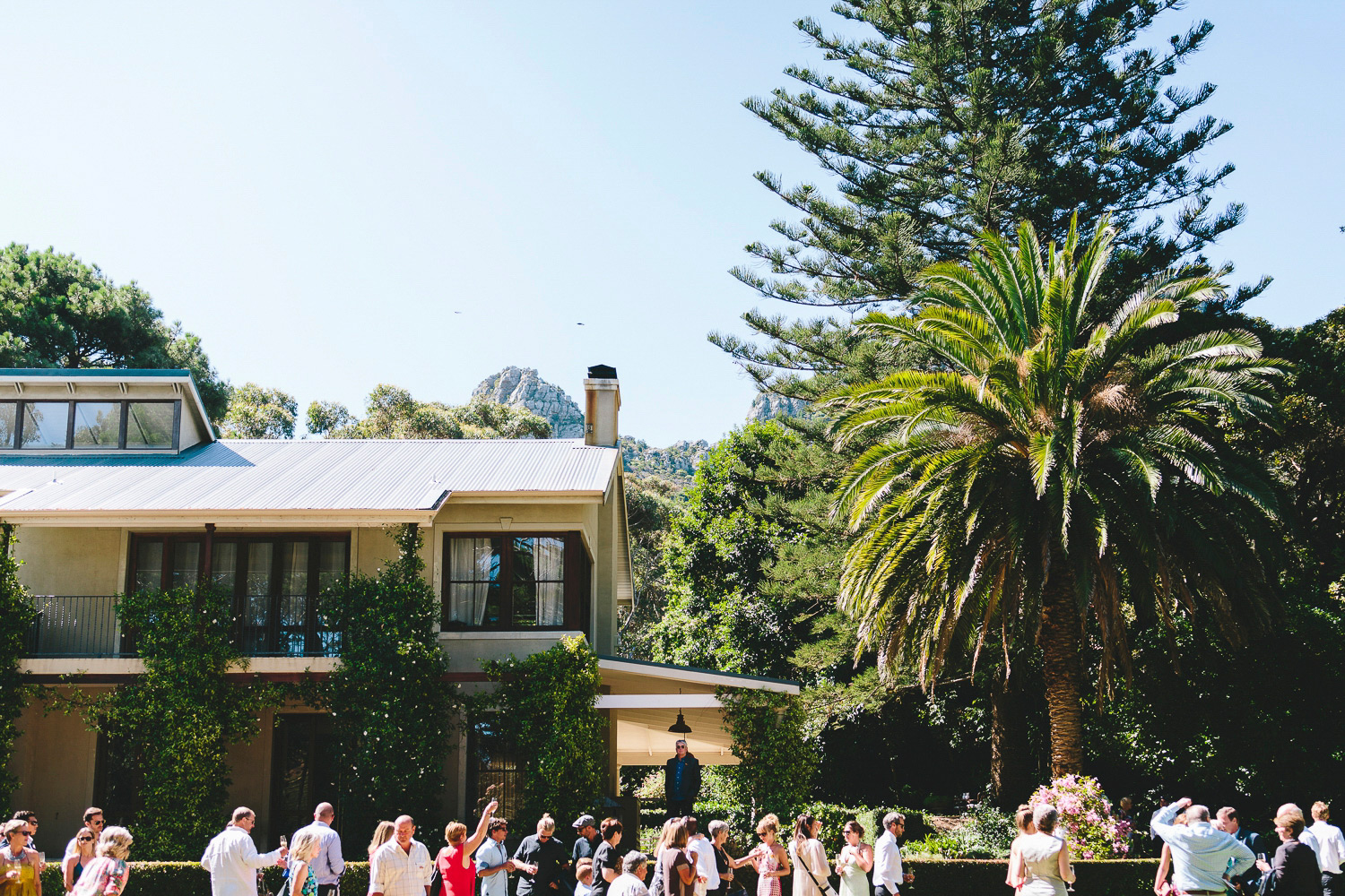 cape-town-wedding-photographer-western-cape-constansia-camilla-charlie-ray28.jpg